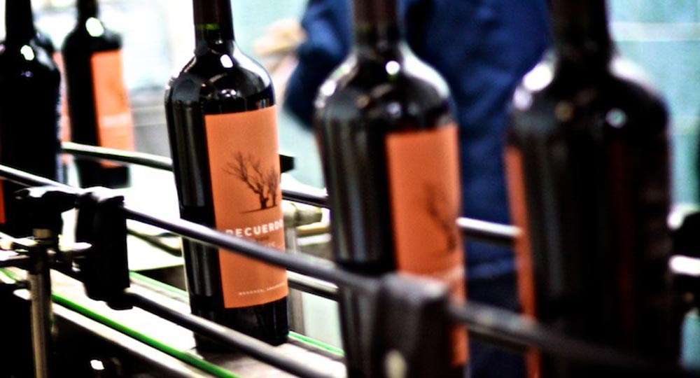 Bottling Malbec