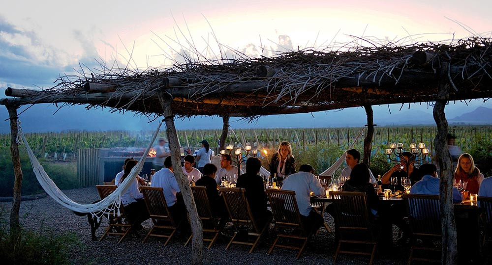 Evening Events in the Vineyard