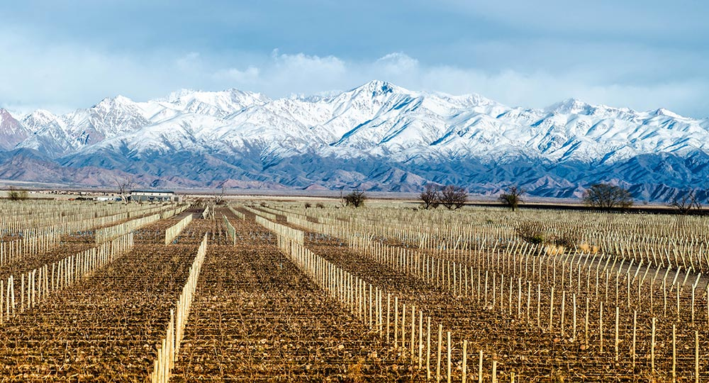 The Mountains of Mendoza