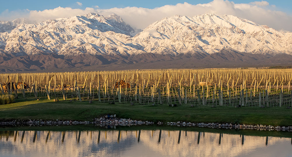 The Snowy Mountains of Mendoza